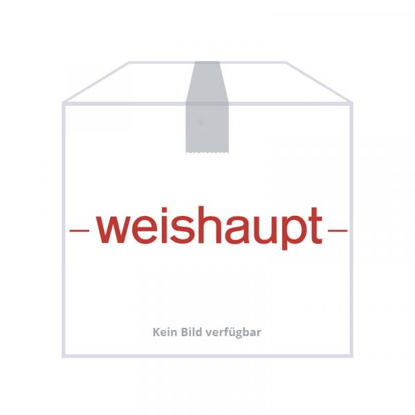 Weishaupt Paket WTC-GB 15-B K-115P Gas-Brennwertgerät, Anschluss oben